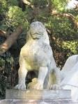 20101129聖教殿狛犬s-.jpg